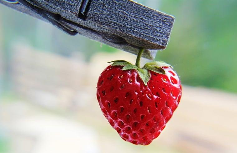 Vitamins in Strawberries