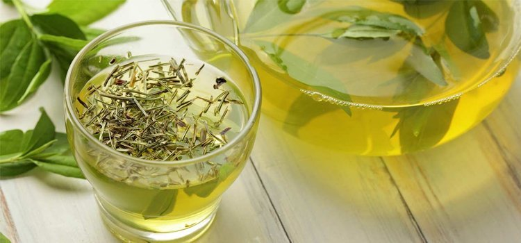 Green Tea for health benifits