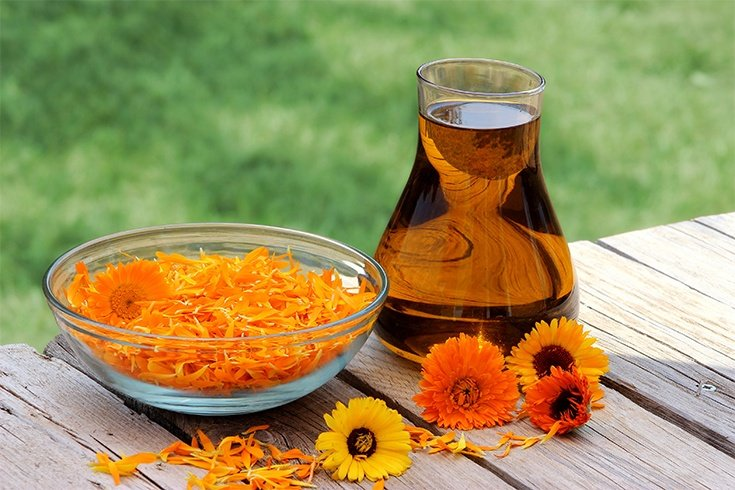 Calendula Oil for Red Dots On Skin