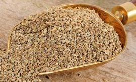 Carom Seeds For All