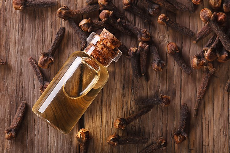 Clove Oil for Bleeding Gums