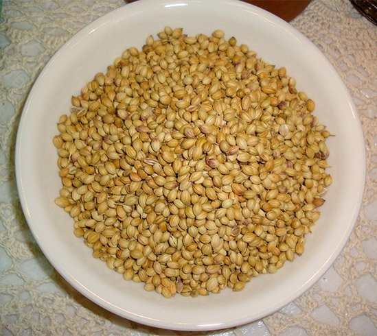 Coriander for Irregular Periods