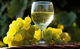 White Wine Health Benefits