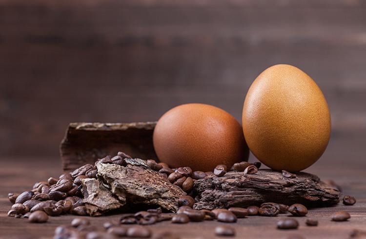 Egg and Coffee Mask