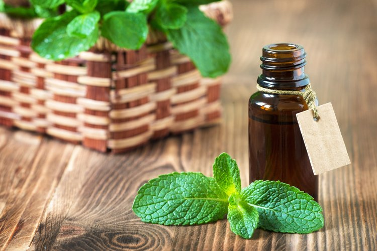 Uses of Peppermint Oil