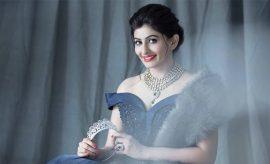 Haut Monde Mrs India Worldwide 2017