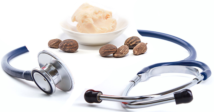 Benefits and Uses of Shea Butter for Health