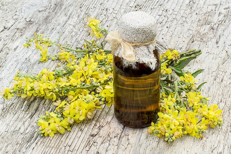 Mullein Oil for Earache