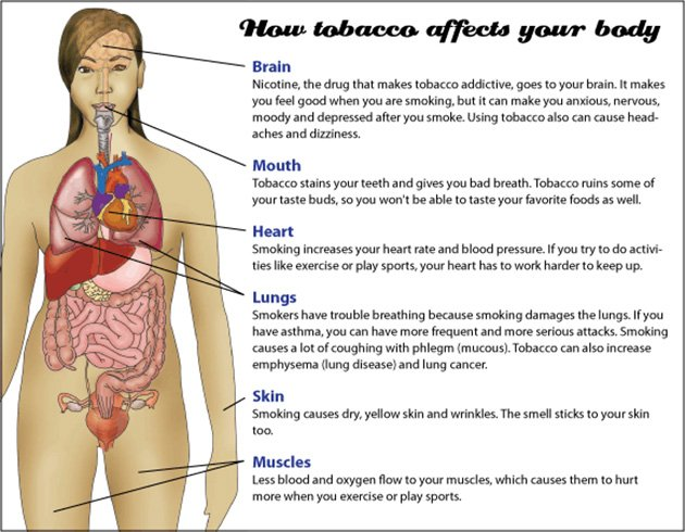 What Does Nicotine Do
