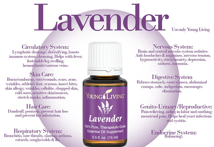 Benefits of Lavender Oil for Health