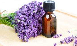 Lavender Oil Benefits and Uses