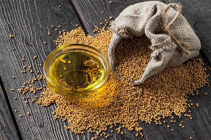 Mustard Oil for Asthma