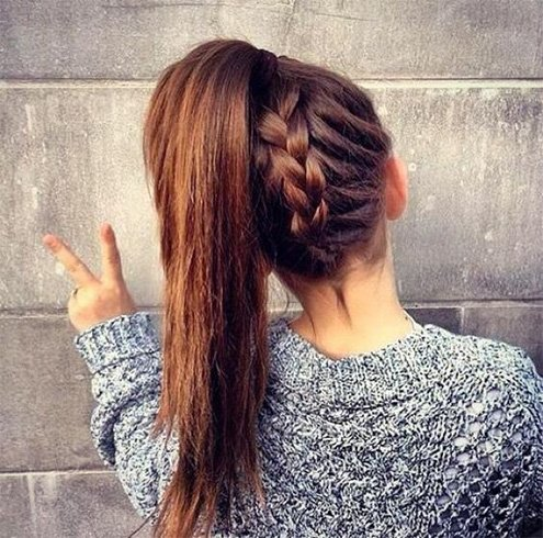 Easy Back Plait Hairstyle