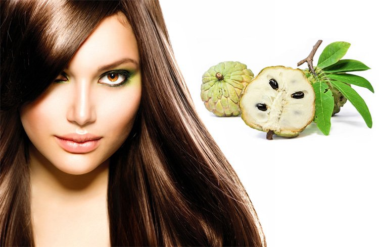 Benefits of Custard Apple for Hair