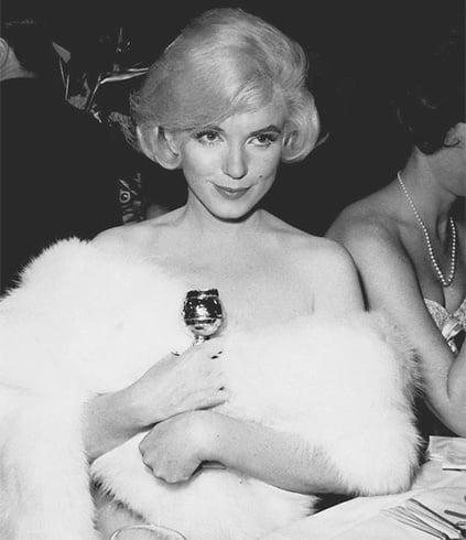 Marilyn Monroe Newtworth