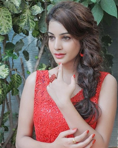 Facts About Diksha Panth