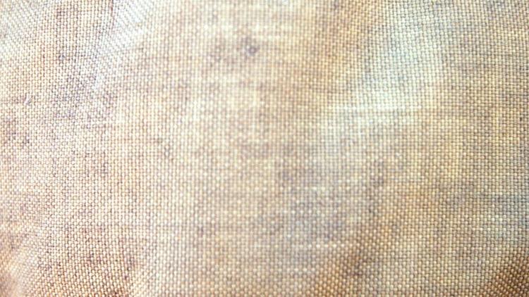 cotton textile industry