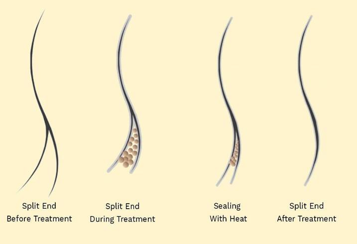 shampoo for split ends