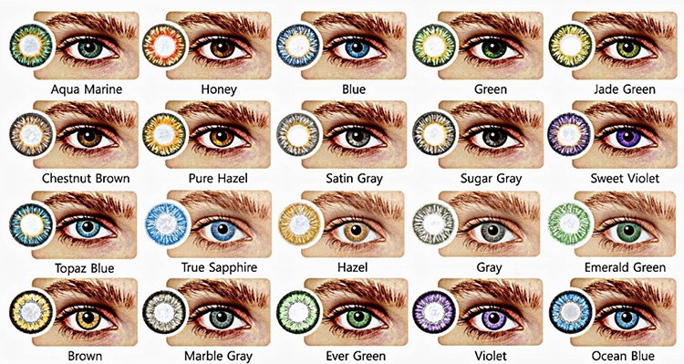Eye Color Genetics Chart