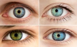 Human Eye Color Chart