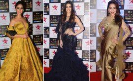 Celebs at Star Screen Awards 2017