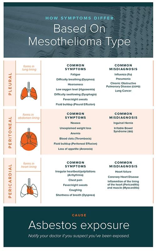 Mesothelioma Types Infographic