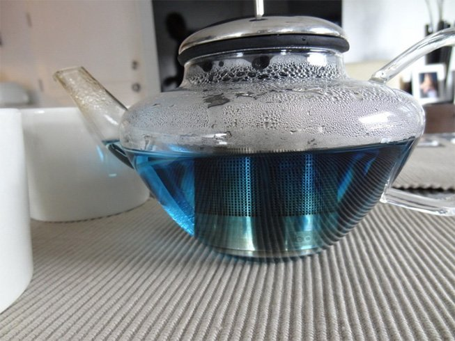 Blue Butterfly Tea