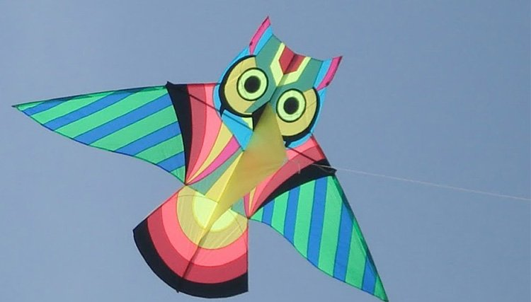 Kite Craft With Skewers