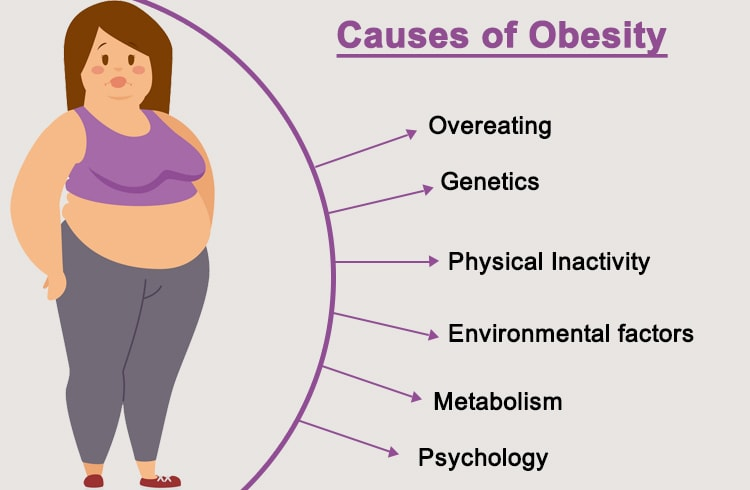 Causes of Obesity