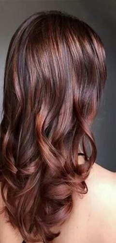 Cinnamon Browns Hair Color