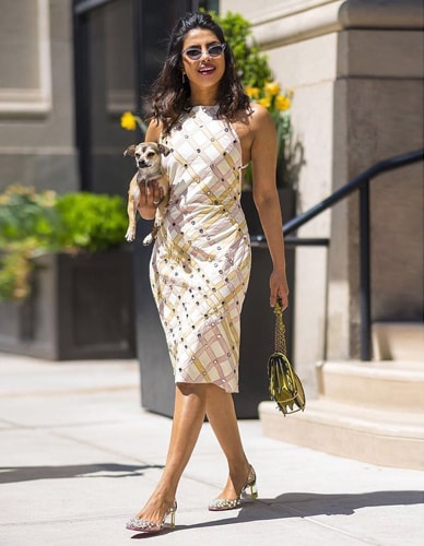 Priyanka chopra In a Midi dress