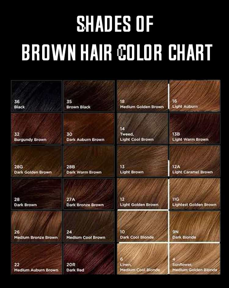 shades of brown hair color chart-min