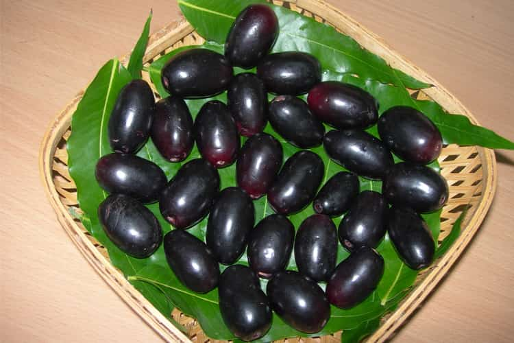 Benefits Of Jamun