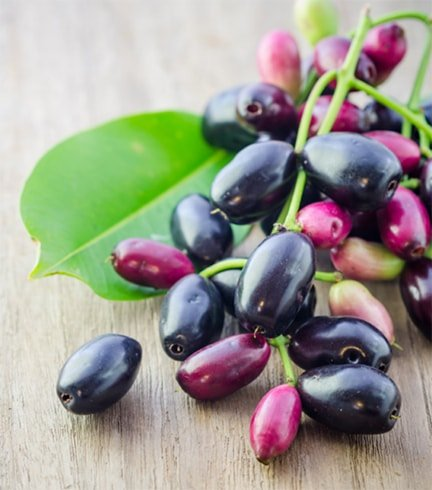 Jamun Fruit Nutrition Value