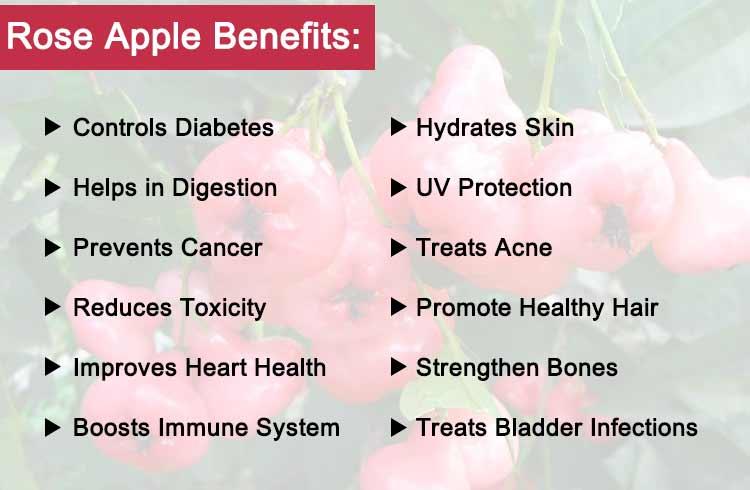 Benefits of pink apple