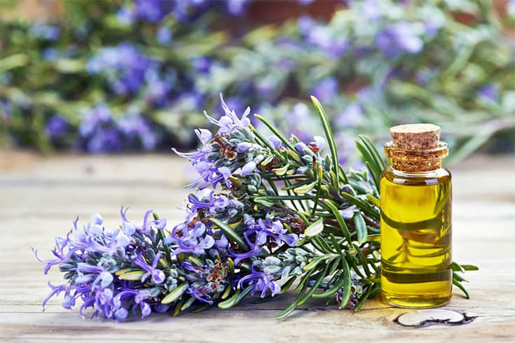 Rosemary Benefits For Skin