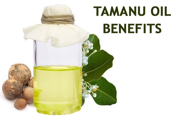 8 Tamanu Öl Vorteile: Die 'Cure All', die Sie wissen müssen