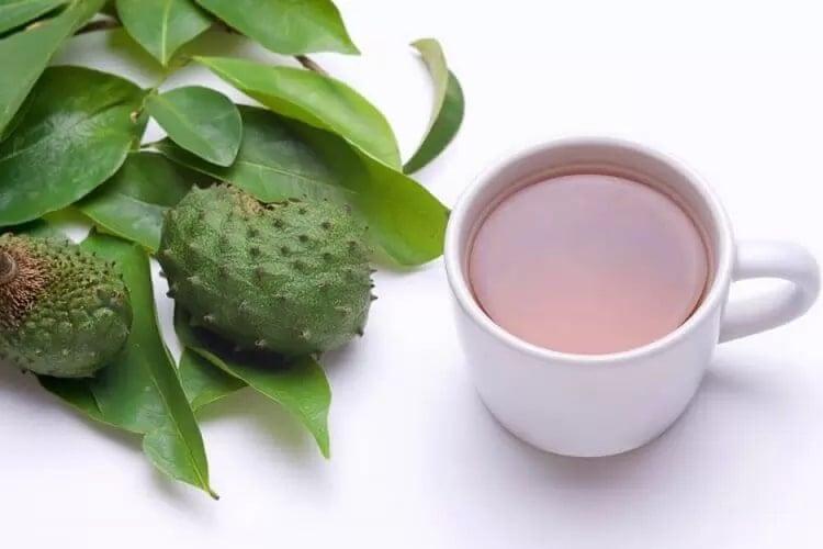 Преимущества чая из листьев гуябано