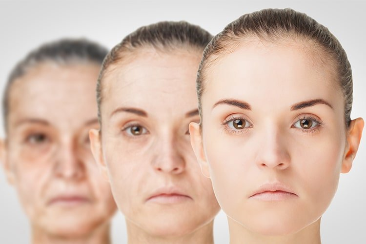Ayurvedic Anti Aging Creams In India