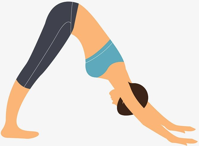 How To Do Adho Mukha Svanasana