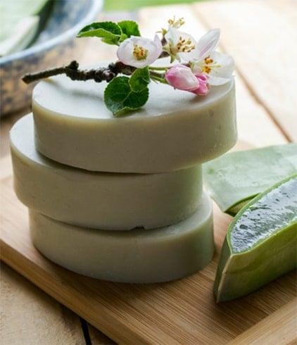 Homemade Aloe Vera Soap with Cocoa Butter