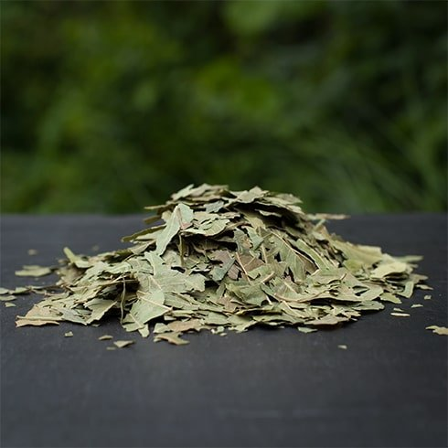 Using Dry Neem Leaves for Preserving Sarees