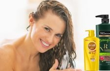 shampoos for dry hair featured